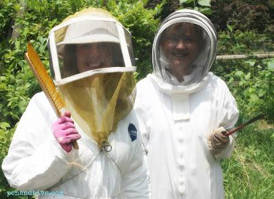 bees suites