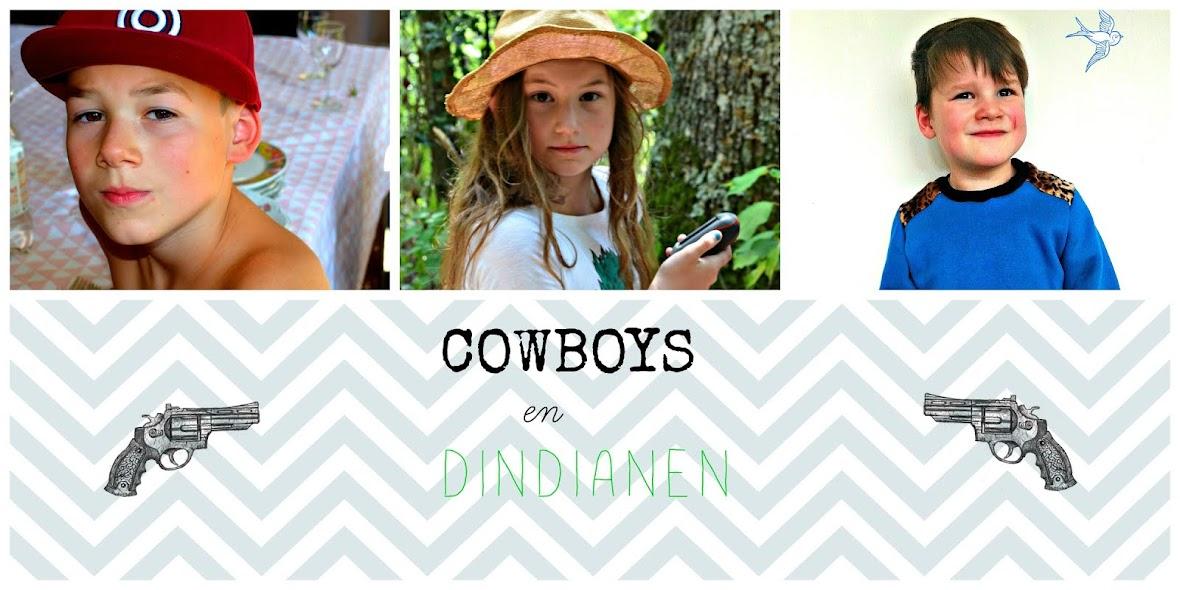 Cowboys en dindianen