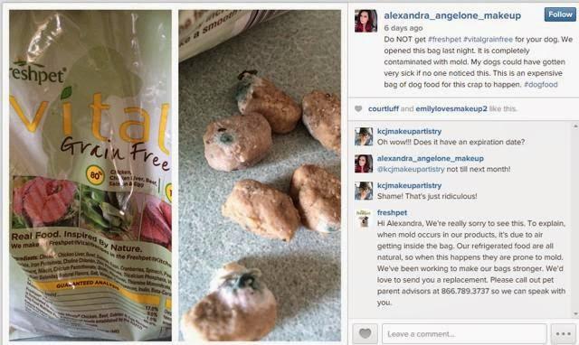 Paws Pet Fresh Adult Dog Food Mince Kg