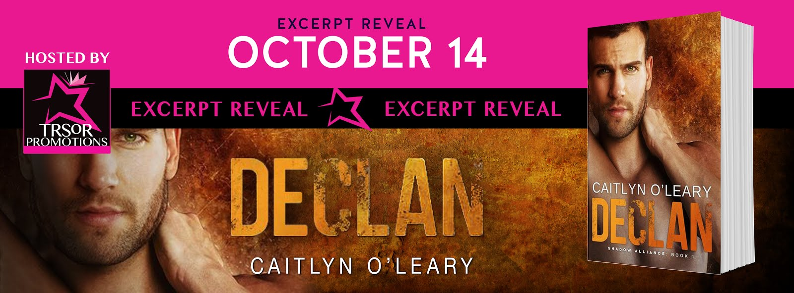 Declan Excerpt Reveal