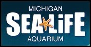 Sea Life Michigan Opens January 29!