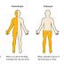 Percepção de hemiplégicos crônicos sobre o uso de dispositivos auxiliares na marcha