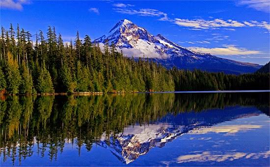 Lost Lake Oregon Willamette National Forest Landscape