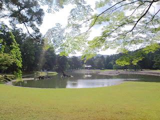写真:毛越寺の庭園