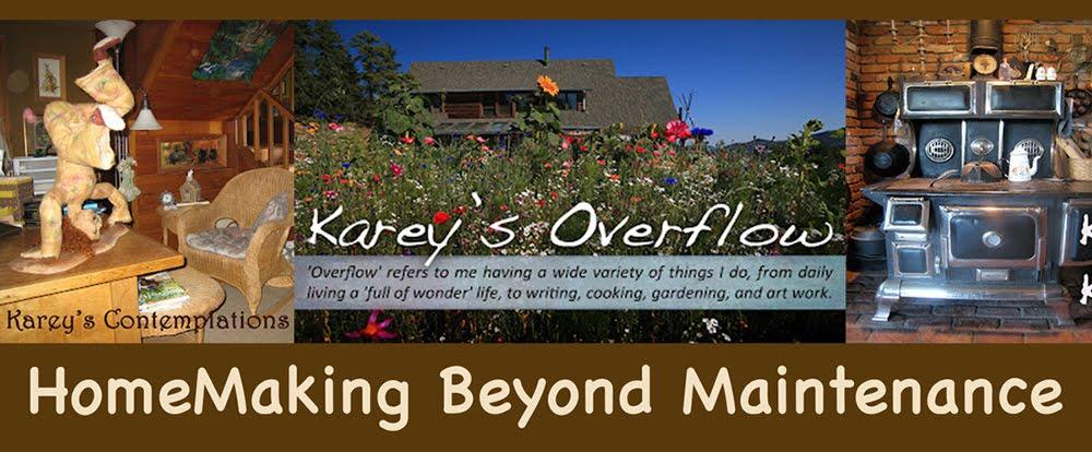Karey Swan's Overflow