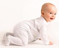Perkembangan Bayi