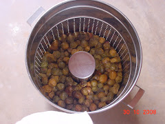 Os frutos do imbu após a retirada do suco