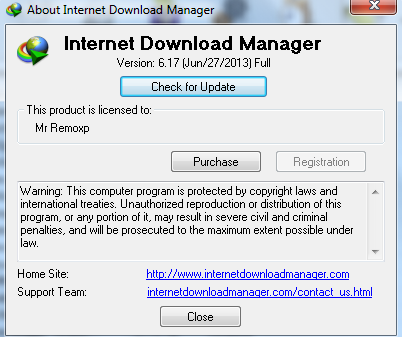 Download IDM 6.17 Final Terbaru 2013 Gratis Tanpa Registrasi Full