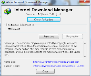 Download IDM 6.17 Final Terbaru 2013 Gratis Tanpa Registrasi Full Version