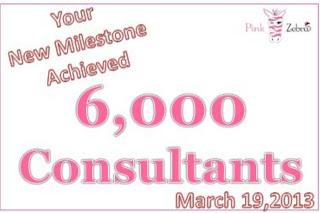 Pink Zebra Consultants Image
