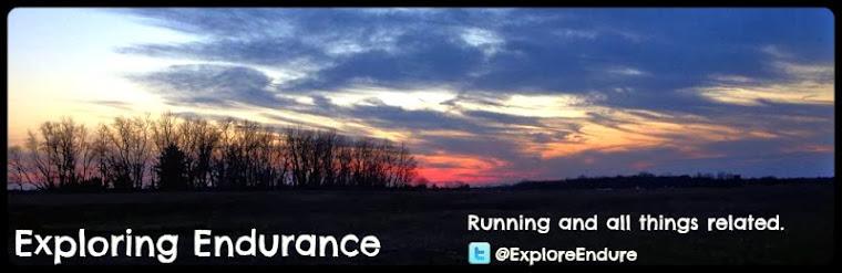 Exploring Endurance