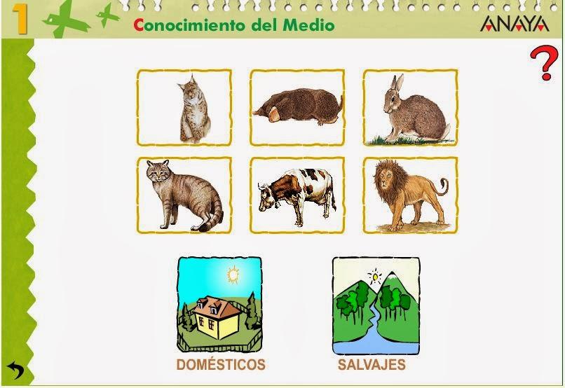 http://centros.edu.xunta.es/ceipcampolongo/intraweb/Recunchos/1/Recursos_Anaya/datos/03_cmedio/03_Recursos/actividades/2losAnimales/act6.htm
