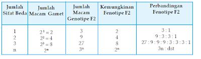 Hubungan antara Jumlah Sifat Beda dengan Banyaknya Macam Gamet F1 dan Perbandingan F2