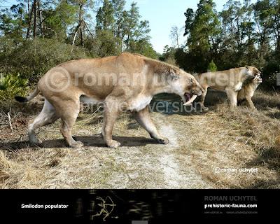 mamiferos extintos de argentina Smilodon