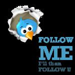tweet...tweet...!!!
