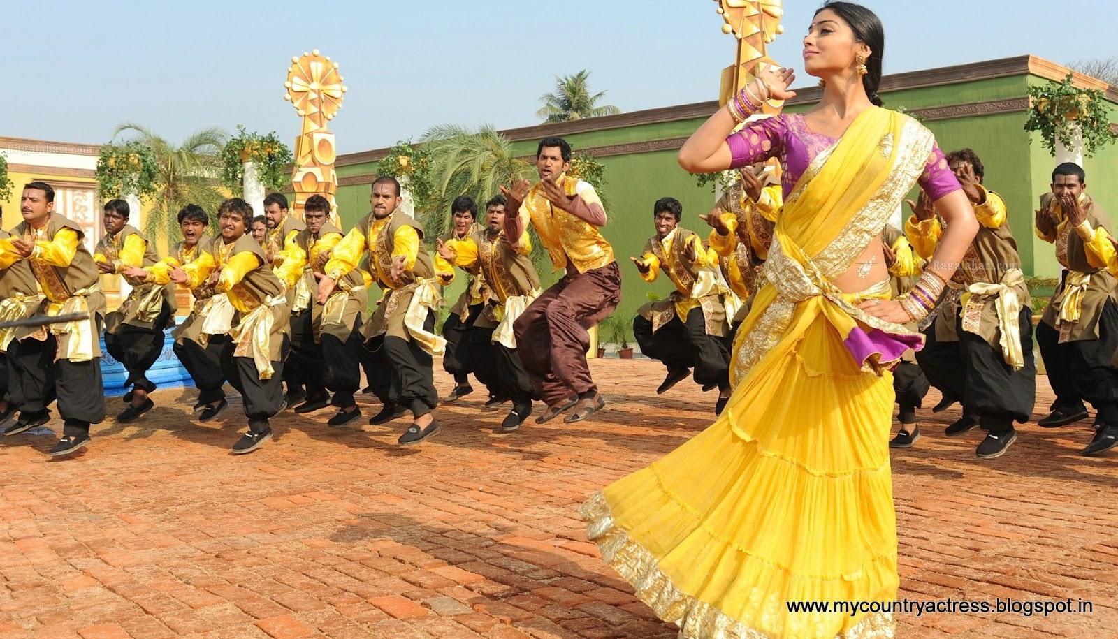 Actress shriya saran hot saree photos collaction