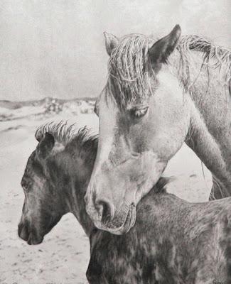 caballos-oleo-lienzo