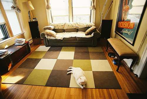 #2 Livingroom Flooring Ideas