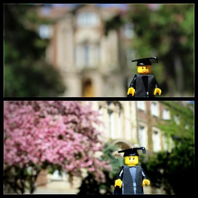 Grad Photos at Convocation Hall