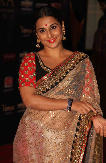 Vidya Balan smiling in see through saree