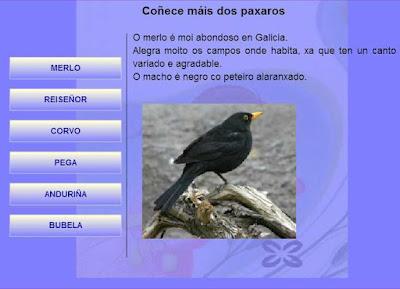 http://engalego.es
