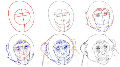 как нарисовать морду обезьяны поэтапно карандашом