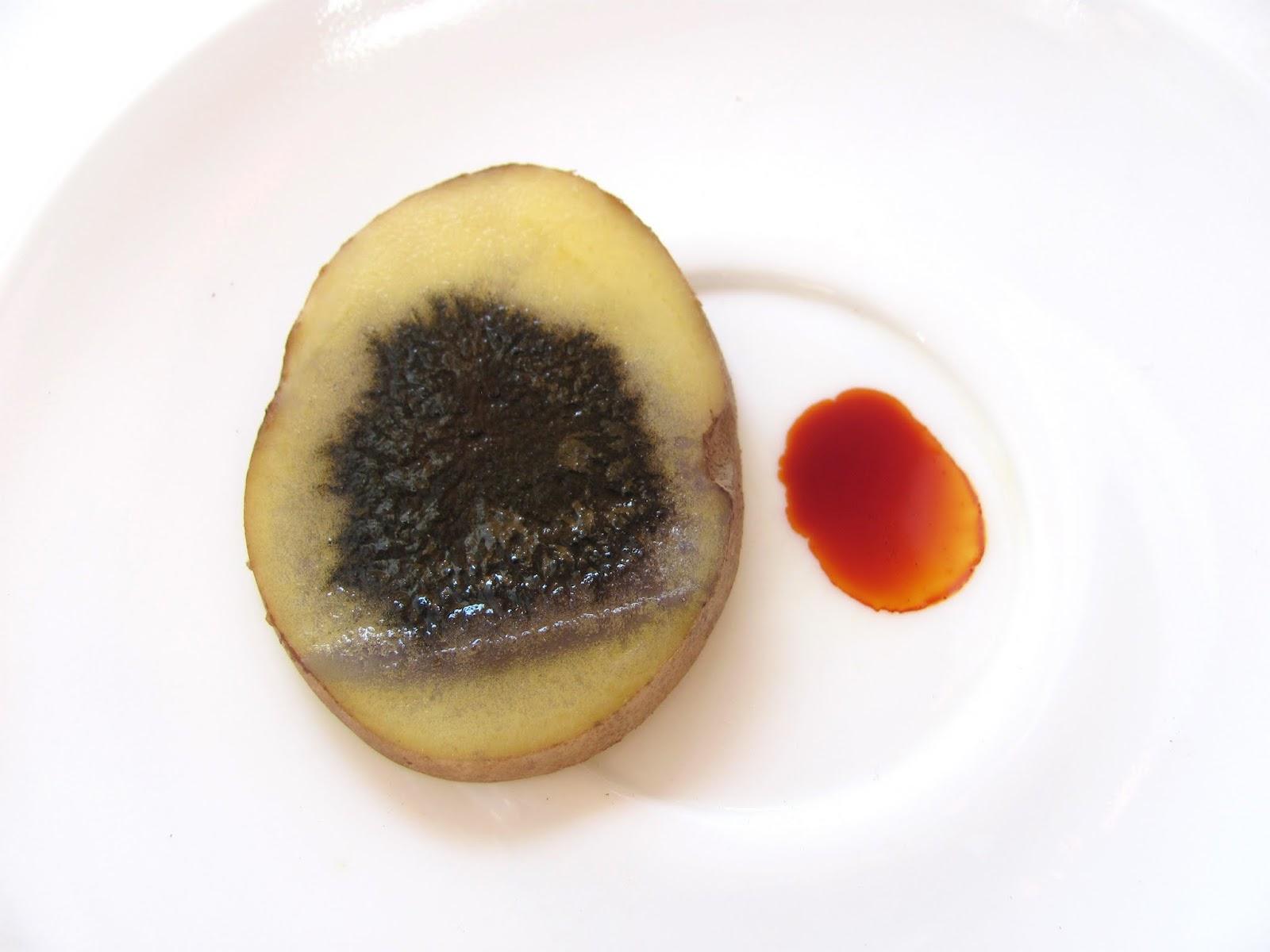 Опыт с йодом и картошкой