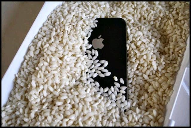 iPhone rơi xuống nước, bạn phải làm sao?