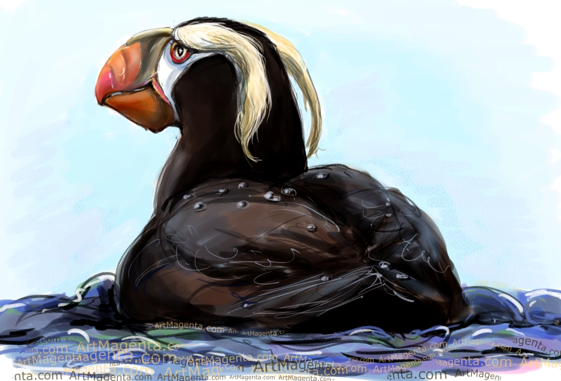 Tufted Puffin sketch painting. Bird art drawing by illustrator Artmagenta