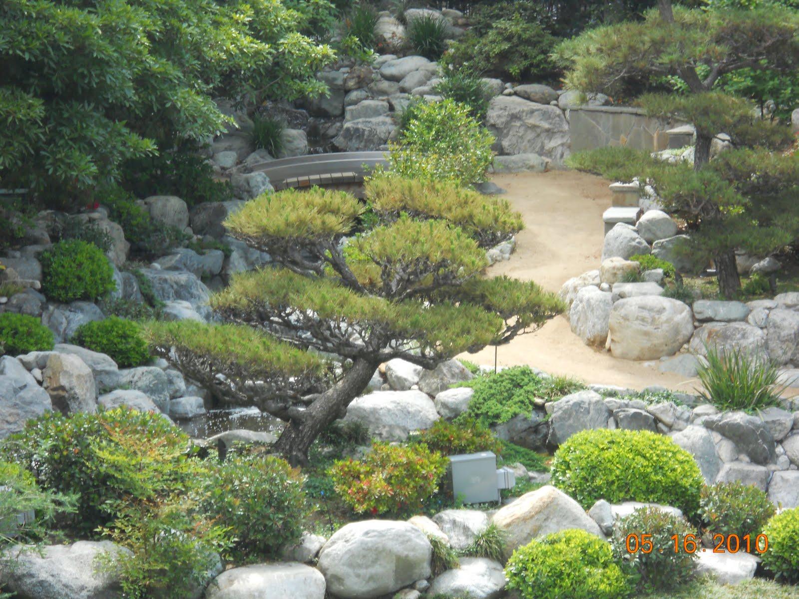 Little tokyo photo blog assignment japanese garden for Little japanese garden
