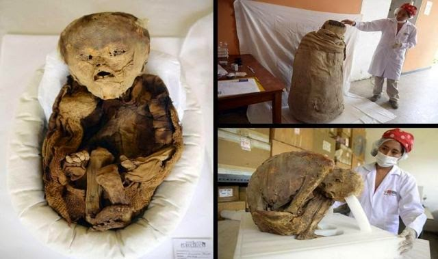 More than 1,000 year-old mummified pre-Inca baby ...