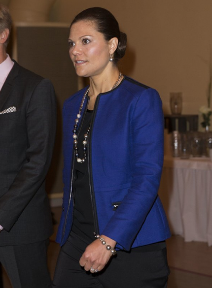 Crown Princess Victoria of Sweden attend Stockholm Environmental Institute's 25th