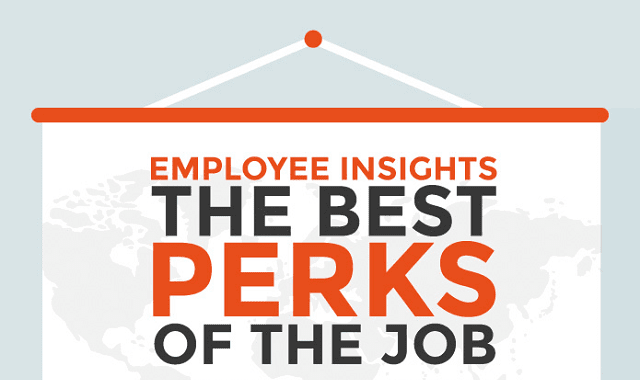 Employee Insights: The Best Perks of the Job