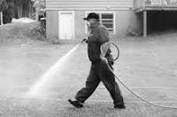control pest service