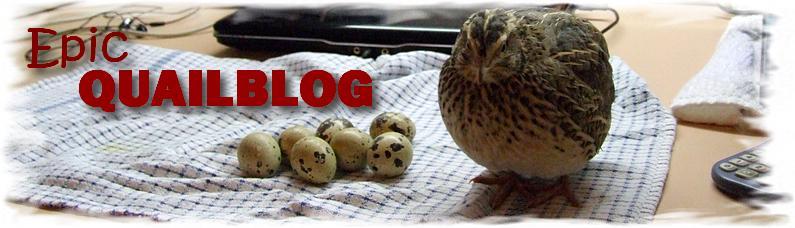 Epic Quailblog