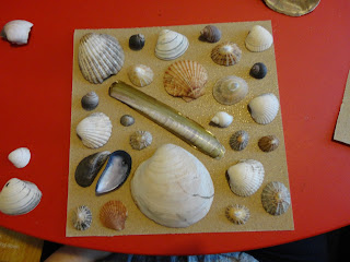 Seashells on Sandpaper
