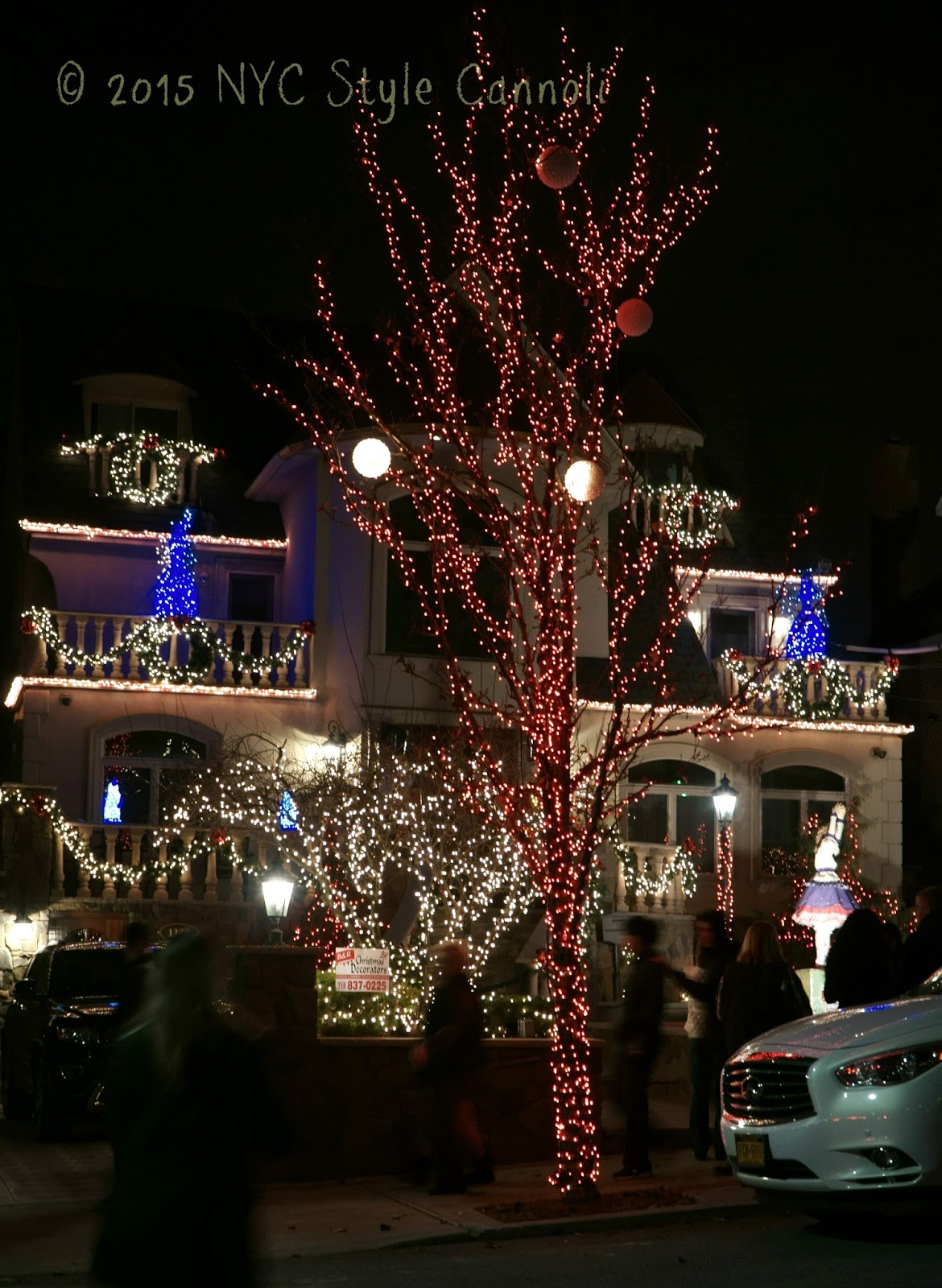 i dont know where the time went let alone the whole year i had the experience of touring the dyker heights holiday lights in brooklyn