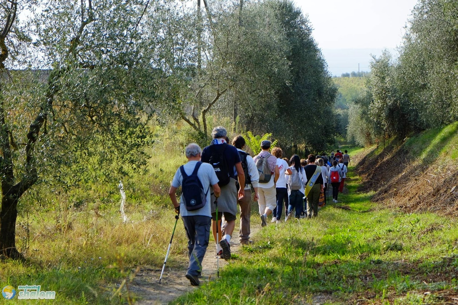 pellegrini sulla via francigena