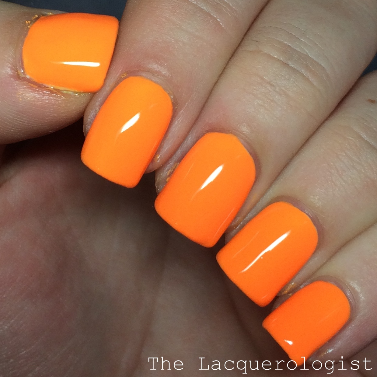 China Glaze Electric Nights Collection: Swatches & Review! | Casual ...