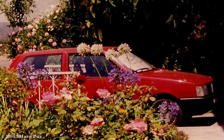 Red Fiat Uno