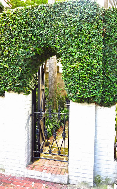 Secret garden and iron gate in Charleston, SC