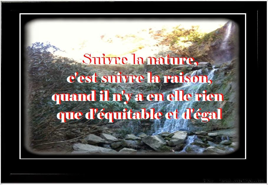 Citation sur la nature en image