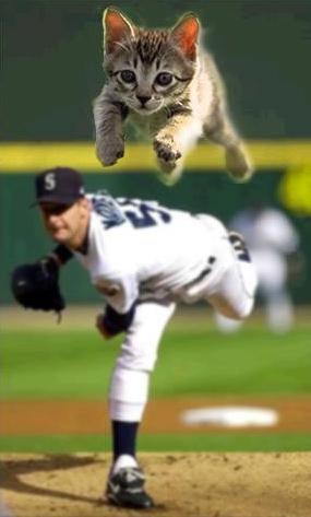 Kitten Ball!