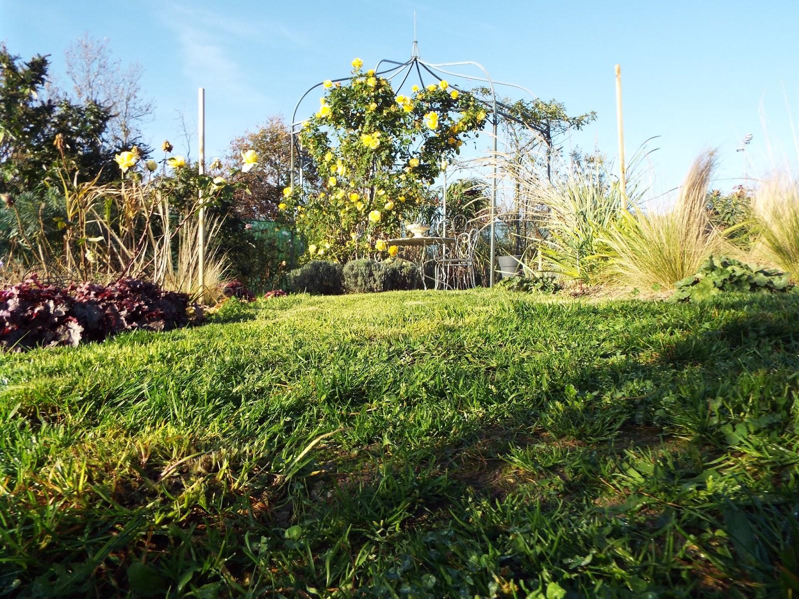 Jardin aux quatre saisons encore du nettoyage au jardin for Jardin encore