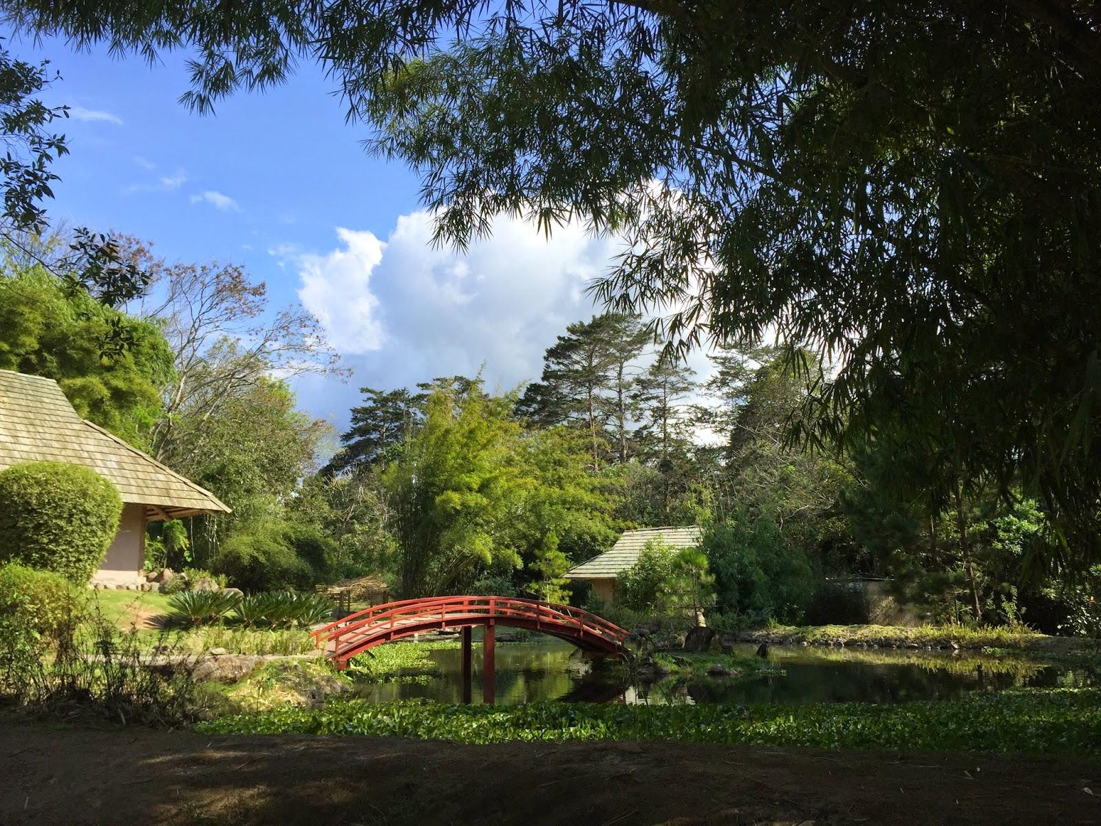 Mis Aventuras En Costa Rica February 2015