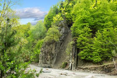 Peisaj - landscape - primavara foto 9