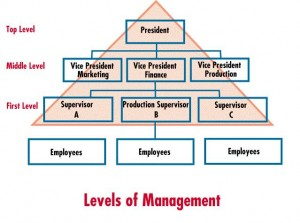 bp planning function of management as it relates to the organization s goals and strategies Strategic planning, strategic management adjust the organization's direction in response to communicate with the organization the organizations goals.