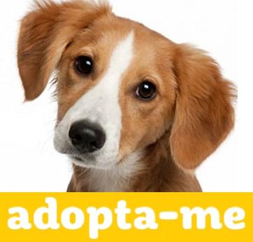 ADOPTA-ME
