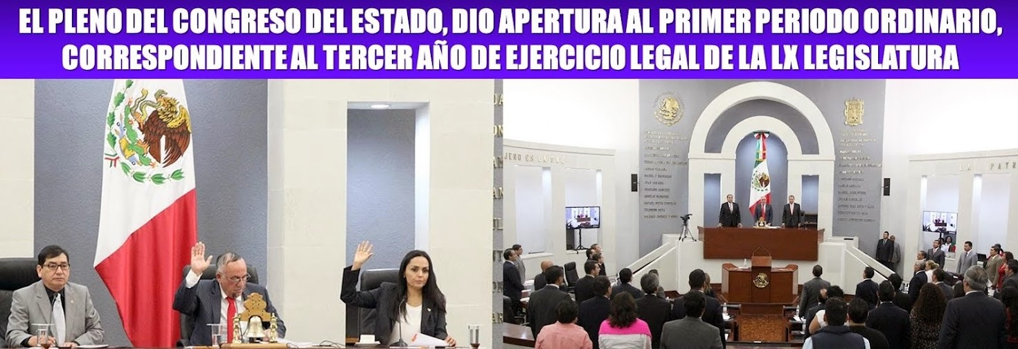 LA LX LEGISLATURA.