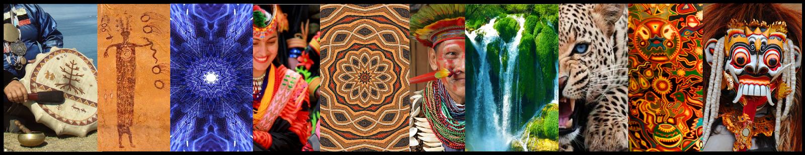 Исследования шаманизма, шаман практик шаманизма -  шаманы Аяуаски